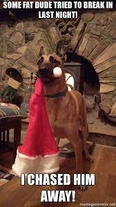 Christmas Dog Meme - 25 christmas memes quotes and humor