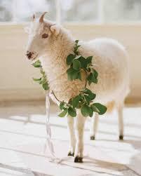 A Romantic Whimsical Destination Wedding In Ireland Martha