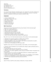 Boilermaker Resume Template Professional Union Business Agent Templates To Showcase Your