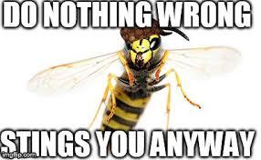 Meme Jacket - scumbag yellow jacket imgflip