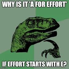 A For Effort Meme - philosoraptor meme imgflip