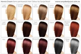 colors 2015 hair henna cream hair colour surya brasil sustainable beauty