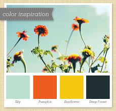 light blue orange yellow and green color palette navy color