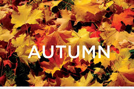 Why Fall Is The Best Season Why Fall Is The Best Season Ever