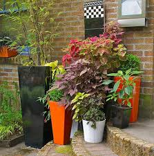 Plant Combination Ideas For Container Gardens Container Gardens Made For The Shade Garden Design