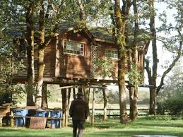 treehouses curbed