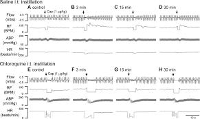 activation of bitter taste receptors in pulmonary nociceptors