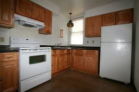 Dark Maple Kitchen Cabinets Appealing Natural Maple Kitchen Cabinets White Appliances Modern