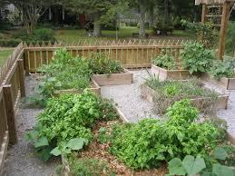 vegetable gardening bed preparation