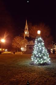 milford tree 2015 citizens for milford