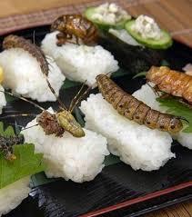 insectes dans la cuisine http urbangirl fr wp content uploads 2013 01 sushis aux