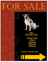puppy for sale flyer templates pet for sale flyer template