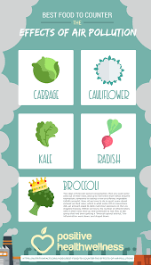best counter best food to counter the effects of air pollution infographic