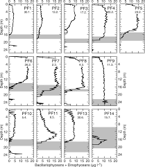 seasonal dynamics and decadal changes of benthic foraminiferal