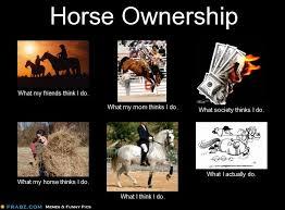 Meme Generator What I Do - horse ownership meme generator what i do picture ideas