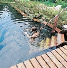 Natural Backyard Pools by 140 Best Backyard Natural Pond Images On Pinterest Natural