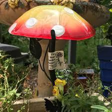 outdoor mushroom lights the rose garden nursery home facebook