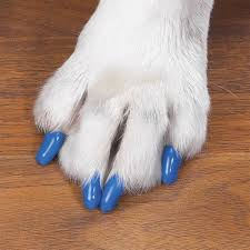 soft claws nail caps many colors accessories hair dye u0026 nail