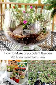 can u0027t wait for spring make this indoor succulent garden