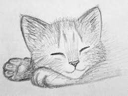easy sketch images best 25 easy drawings of animals ideas on easy animal