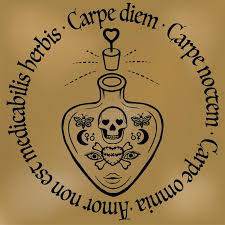 inspirational quote carpe diem outline potion or