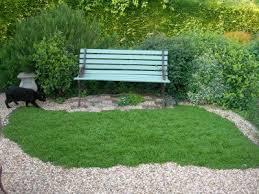 Backyard Ground Cover Options 165 Best Garden Groundcovers Images On Pinterest Garden Ideas