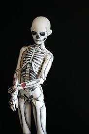 Boys Skeleton Halloween Costume 10 Boys Skeleton Costume Ideas Diy Skeleton