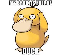 Psyduck Meme - know your meme poor psyduck image uploaded