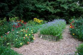 choosing best mulch for vegetable gardens landscaping