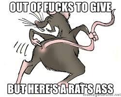 Rats Ass Meme - out of fucks to give but here s a rat s ass rat s ass meme