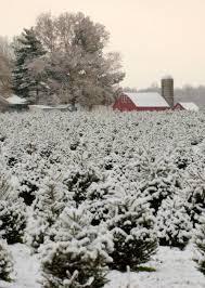 535 best winter landscapes images on pinterest winter snow