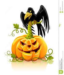 halloween pumpkin vegetable with black raven bird stock images