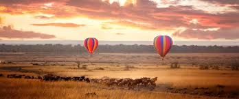 safari safari and kilimanjaro tours kandoo adventures