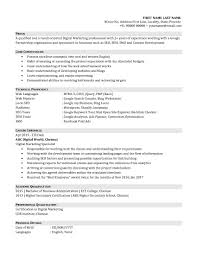 Resume Seo Resume Format Of An Entry Level Digital Marketing Professional