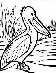 25 bird coloring pages ideas kids coloring