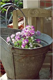 decorative watering cans 309 best the beauty of zinc images on pinterest galvanized metal