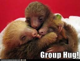 Group Hug Meme - animal capshunz group hug funny animal pictures with captions