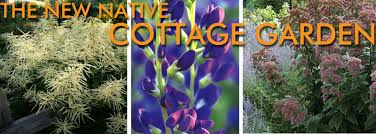 native plant garden grounded design by thomas rainer native plants for the cottage garden