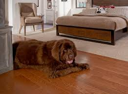 53 best laminate flooring images on laminate flooring