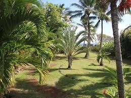 hana ocean palms bungalow walk coast from v vrbo
