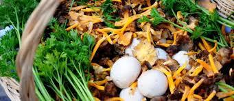recette de cuisine vegetarienne recettes de chignons et de cuisine végétarienne