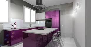 cuisine violette interessant cuisine violet conseils violette et blanc grise brico