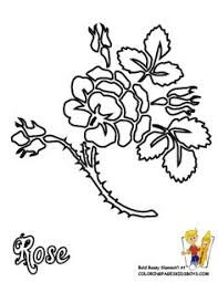 Easter Flower Coloring Pages - calla lily color pages calla lily flower grayscale coloring page