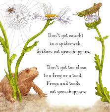 are you a grasshopper judy allen macmillan