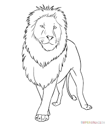 photos drawing of a lion drawing art gallery