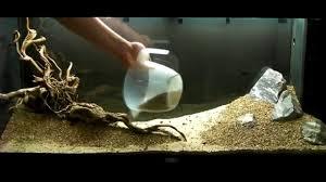 Aquarium Aquascaping Aquarium Setup Aquascape Step By Step And Final Product Live