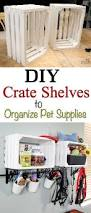 best 25 pet supplies ideas on pinterest dog toys food for