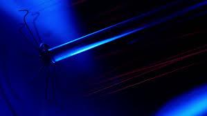 tungsten filament of electric bulb vintage filament edison light