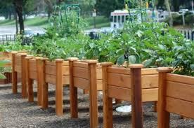garden design garden design with backyard garden box ideas garden