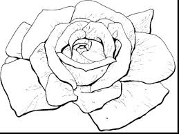 coloring pages roses rose free heart